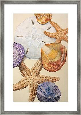 Vertical Starfish Framed Print