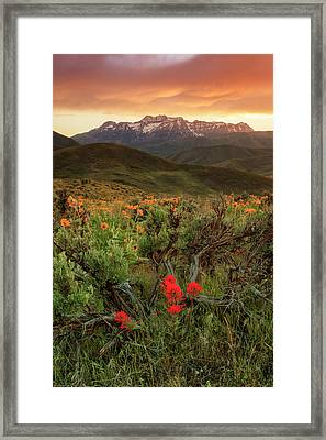 Vertical Timp With Wildflowers Framed Print