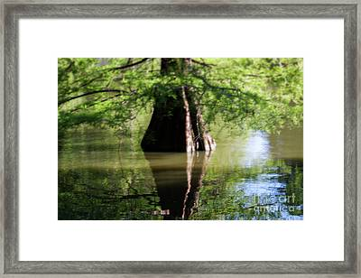 Vertices Framed Print