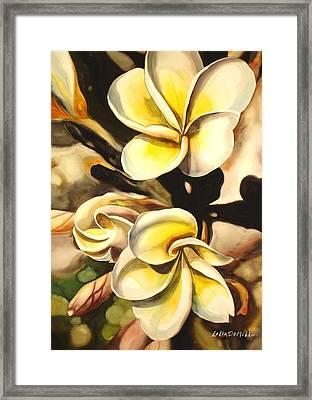 Verticle Plumeria Framed Print
