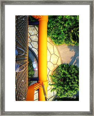 Vertigo Framed Print by Alina Davis
