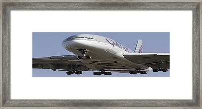 Very Fat Qatar Airlines Airbus A380  Framed Print