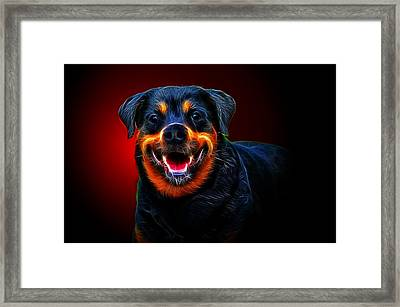 Very Merry Rottweiler Framed Print by Alexey Bazhan