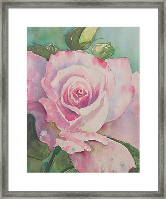 Very Rose  Framed Print