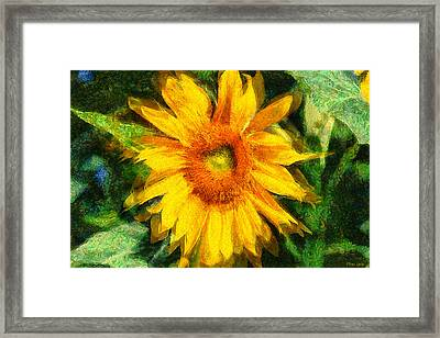 Very Wild Sunflower Framed Print