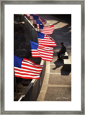 Veteran With Our Nations Flags Framed Print
