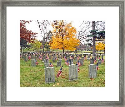 Veterans Day Framed Print by Barbara McDevitt
