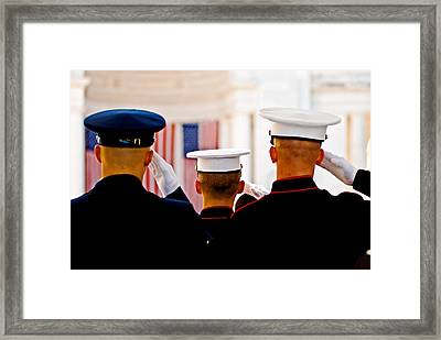 Veterans' Day Salute Framed Print