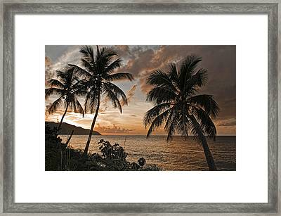Vi Sunset On Cane Bay  Framed Print