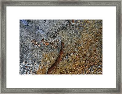 Via Borgo Santo Spirito Framed Print by Tommaso Leto