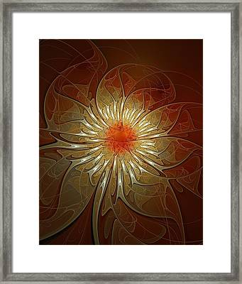 Vibrance Framed Print by Amanda Moore