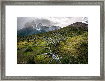 Vibrant Desolation Framed Print
