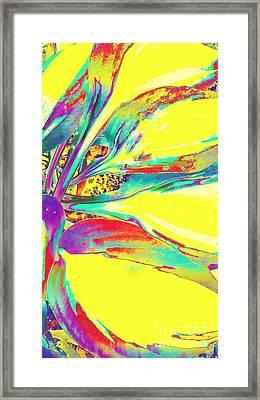 Vibrant Fascination  Framed Print