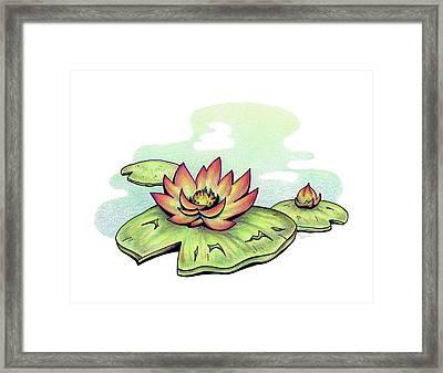 Vibrant Flower 2 Water Lily Framed Print