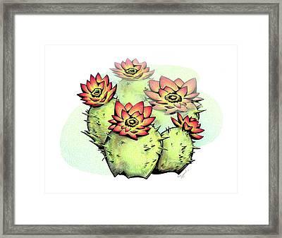 Vibrant Flower 6 Cactus Framed Print