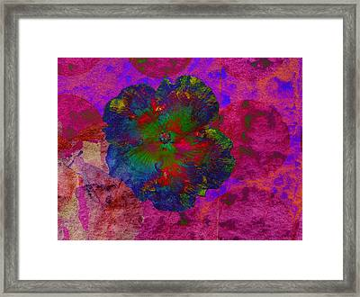 Vibrant Flower Series 1 Framed Print by Jen White