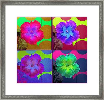 Vibrant Flower Series 2 Framed Print by Jen White