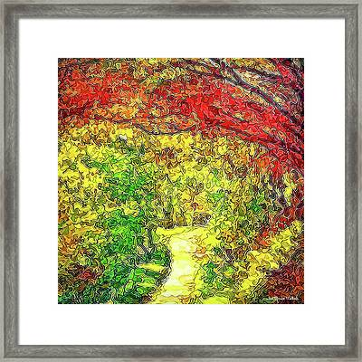 Vibrant Garden Pathway - Santa Monica Mountains Trail Framed Print