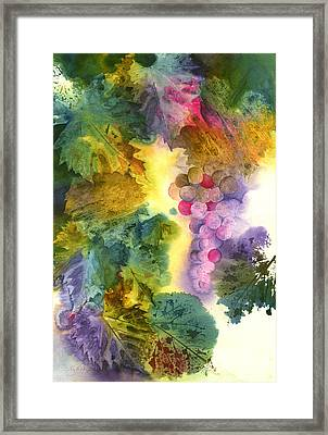 Vibrant Grapes Framed Print by Gladys Folkers