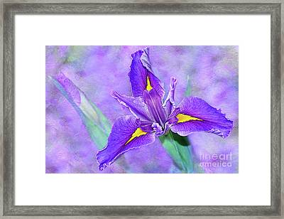 Framed Print featuring the photograph Vibrant Iris On Purple Bokeh By Kaye Menner by Kaye Menner