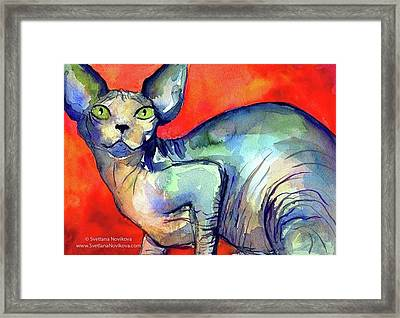 Vibrant Watercolor Sphynx Painting By Framed Print