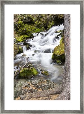 Vibrant Waterfall Landscape Framed Print by Dana Moyer