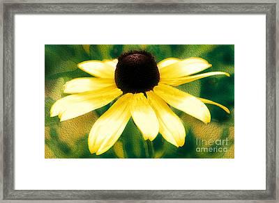 Vibrant Yellow Coneflower Framed Print by Judy Palkimas