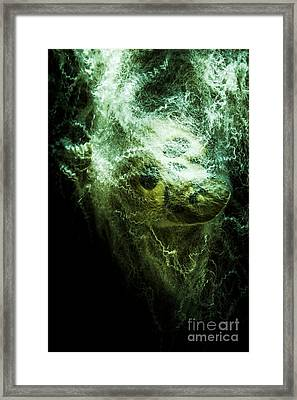 Victim Of Prey Framed Print by Jorgo Photography - Wall Art Gallery