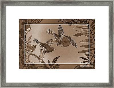 Victorian Birds In Sepia Framed Print