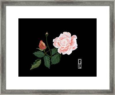 Victorian Rose Framed Print