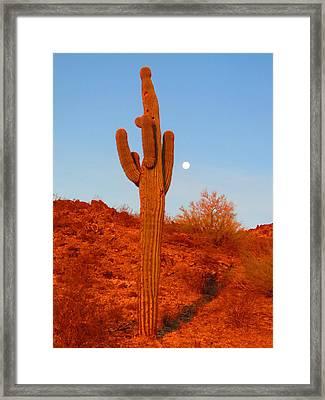 Victor's Harvest Moonset Framed Print