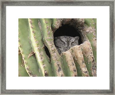 Victor's Home Framed Print