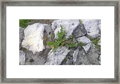 Victory Of Life Framed Print