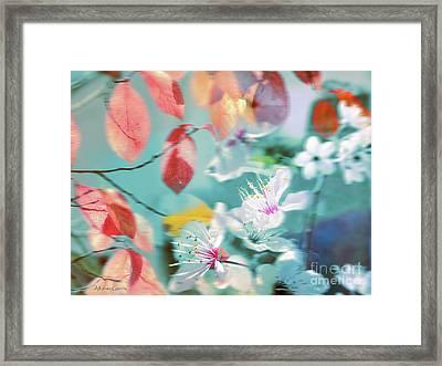Viento De Primavera Framed Print by Alfonso Garcia