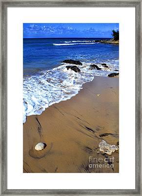 Vieques Framed Print by Thomas R Fletcher