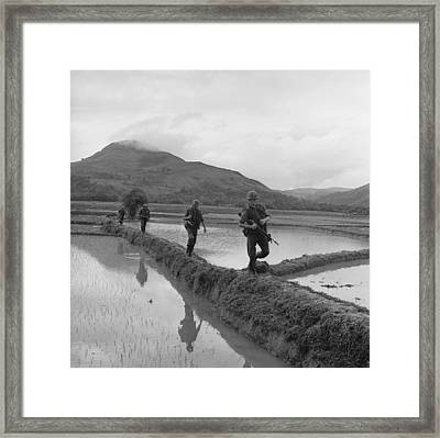 Vietnam War. Us Marines Move Along Rice Framed Print