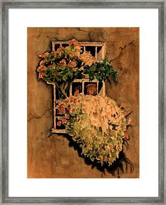 View From A Roman Window Framed Print by Dan Earle