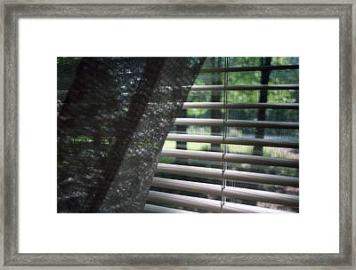 Framed Print featuring the photograph View From A Window by Wanda Brandon