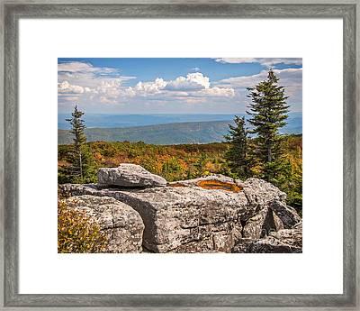 View From Bear Rocks 4173c Framed Print