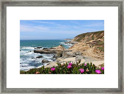 Framed Print featuring the photograph View From Bodega Head In Bodega Bay Ca - 2 by Christy Pooschke
