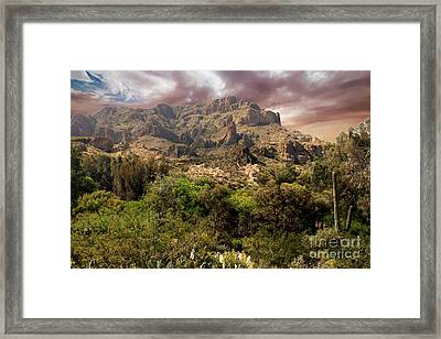 View From Boyce Thompson Framed Print by Anne Rodkin