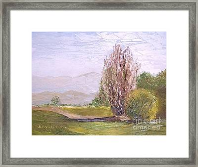 View From Casa Galleria Framed Print