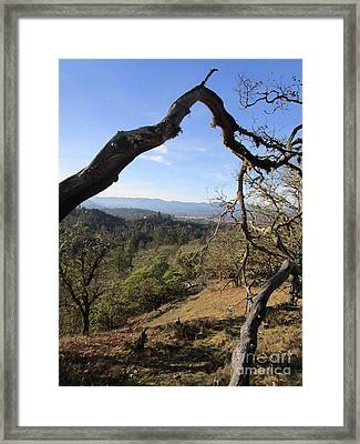 View From Cathedral Hills Framed Print