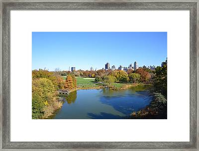 View From Central Park Ny Framed Print