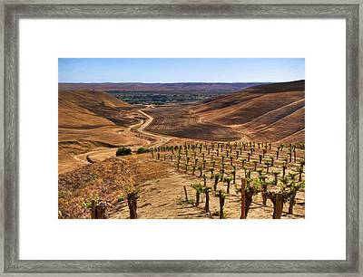 View From Chapel Hill Framed Print
