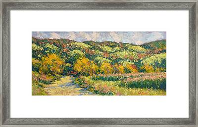 View From Pine Plains Framed Print by Gene Cadore