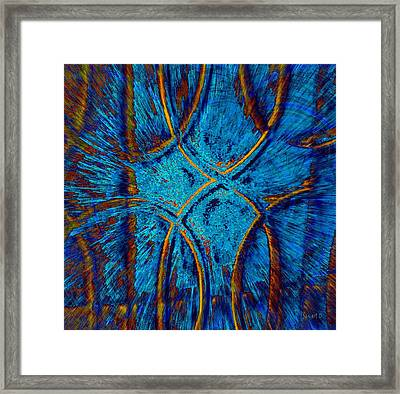 View From The Gate Framed Print by Fania Simon