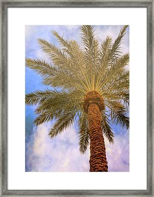 View From The Pool Framed Print by JAMART Photography