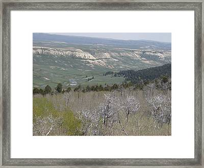 View From The Top Framed Print by Susan Pedrini