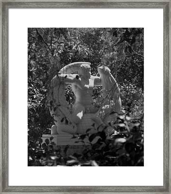 View From The Trees Framed Print by Gregory Letts